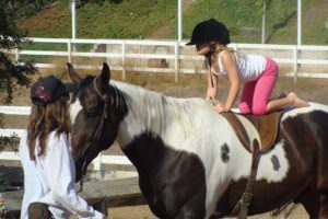Learning to ride horse